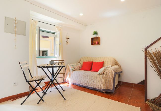 Friendly living room in apartment in the typical area